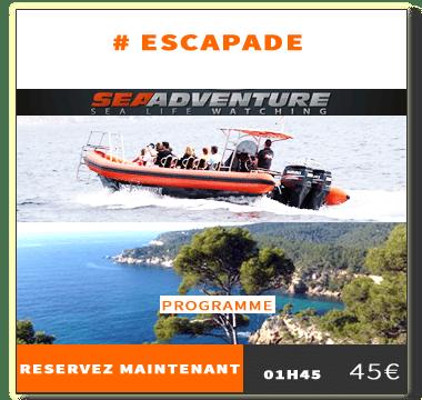 http://sea-adventure.net/wp-content/uploads/2018/01/reservation-escapade.png
