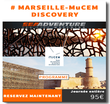 http://sea-adventure.net/wp-content/uploads/2018/01/reservation-marseille-mucem-discovery.png