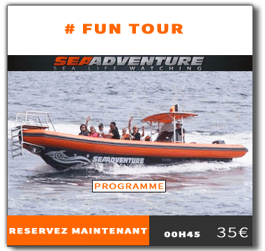 https://sea-adventure.net/wp-content/uploads/2016/01/reservation-fun-tour.png