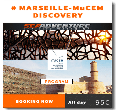https://sea-adventure.net/wp-content/uploads/2018/01/reservation-marseille-mucem-discovery-en