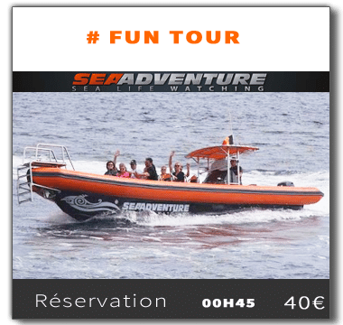 Have adult adventure tour for