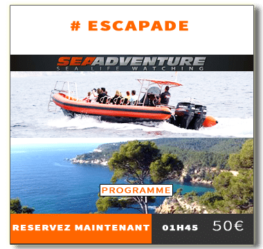 https://sea-adventure.net/wp-content/uploads/2019/01/reservation-escapade.png