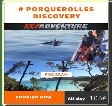 https://sea-adventure.net/wp-content/uploads/2020/02/reservation-porquerolles-discovery-en-2020.png