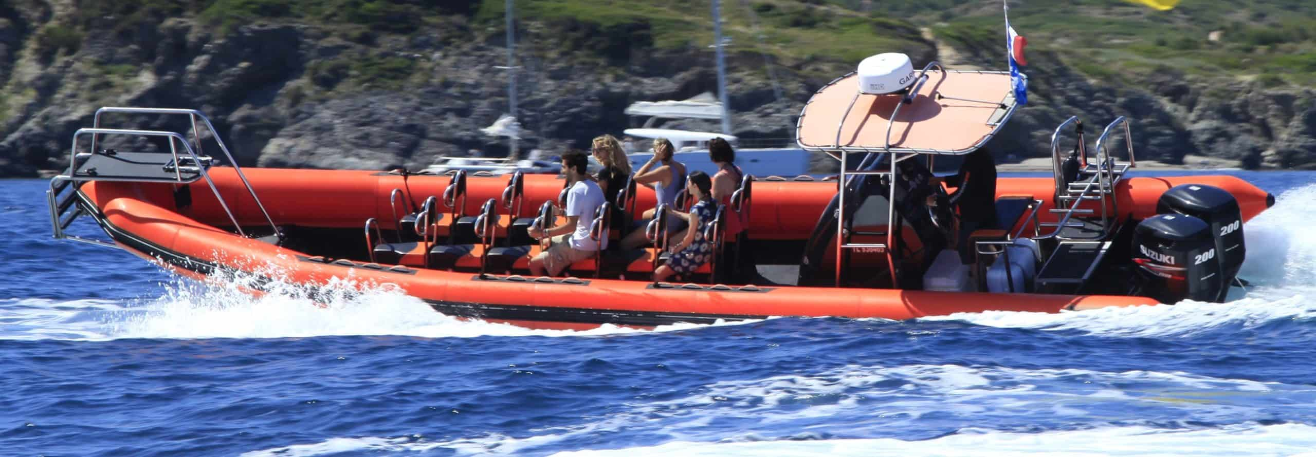 Whale watching Friday 24 september