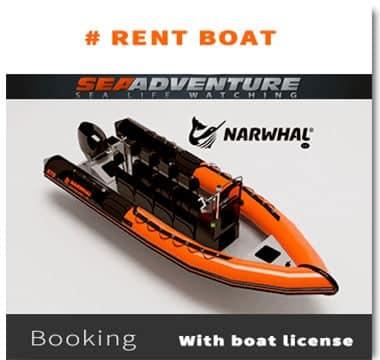 https://sea-adventure.net/wp-content/uploads/2021/06/rent-boat.jpg